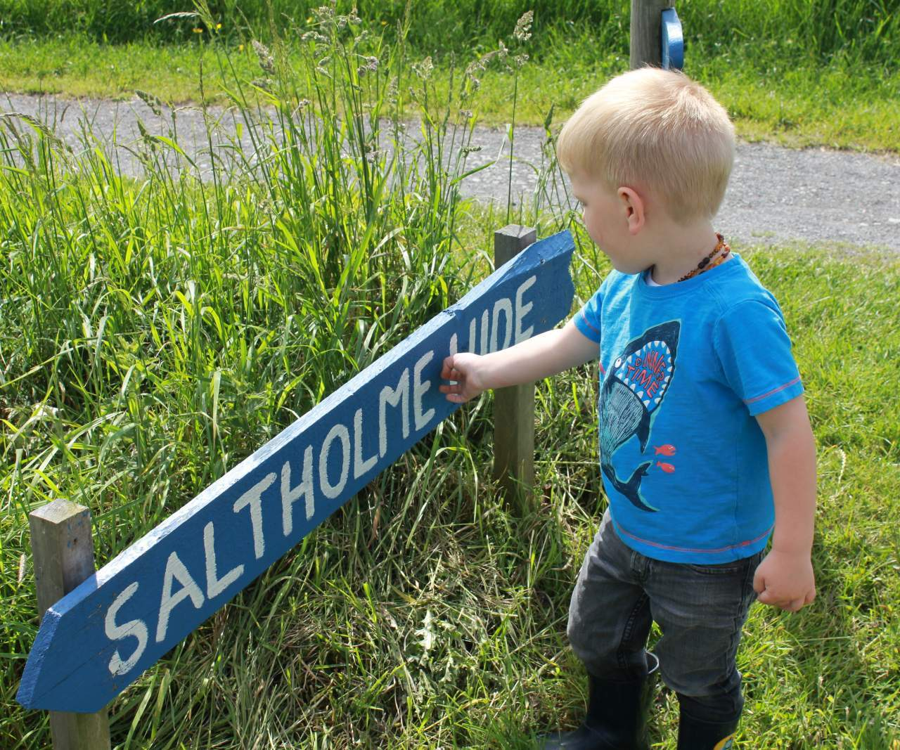 A full day out at RSPB Saltholme
