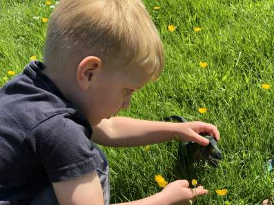 boy playing with dinosaur in grass