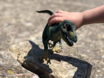preschool dinosaur play on rock