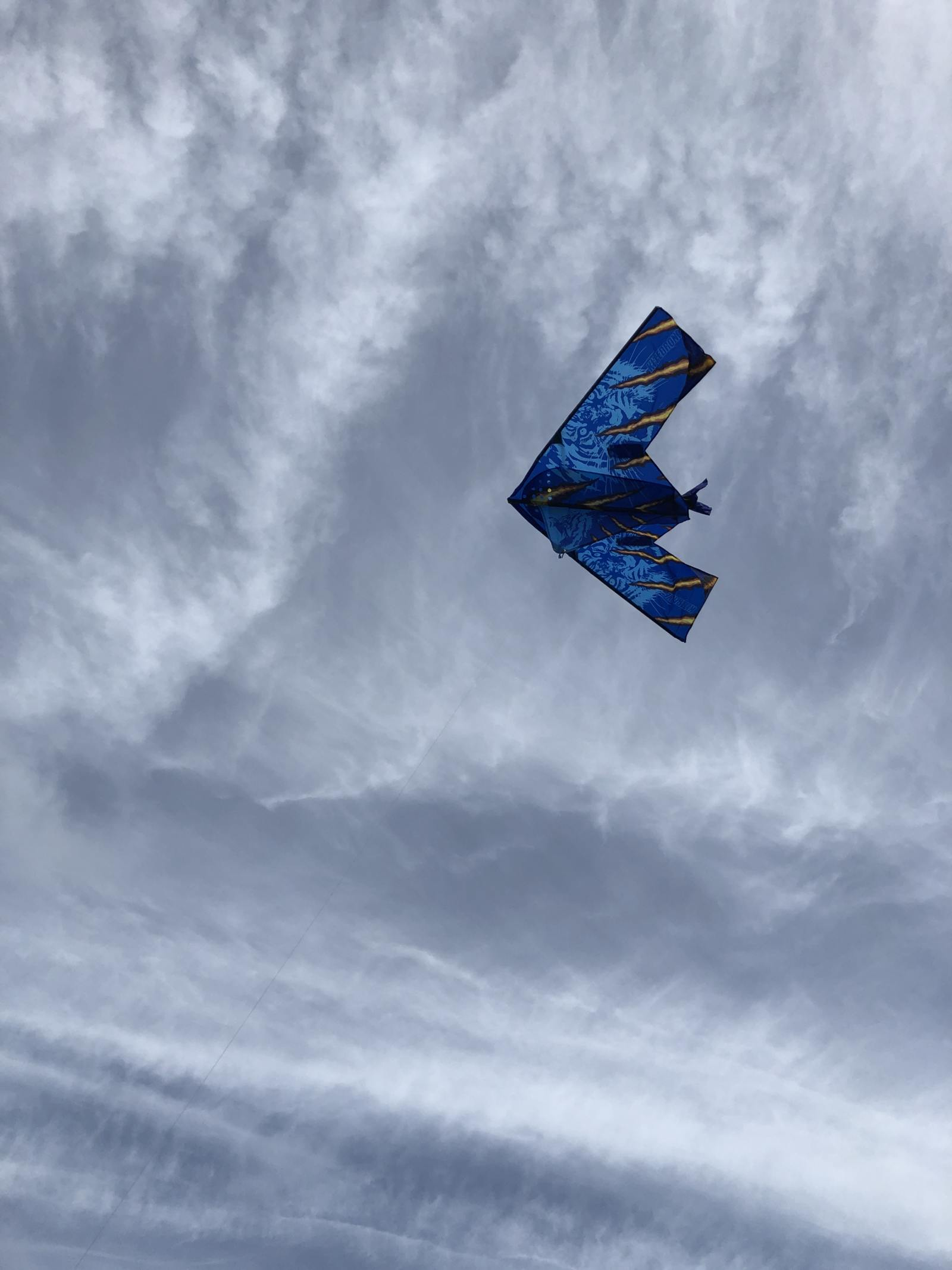 kitedrone kite in the cloudy sky