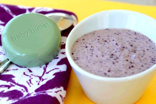 blueberry-protein-puree