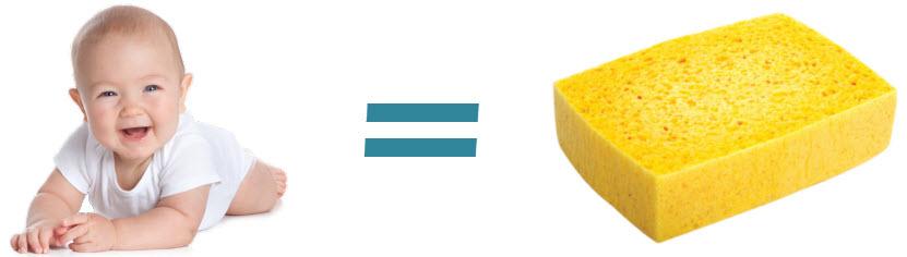 babies are sponges