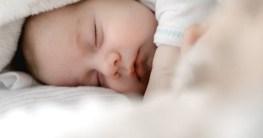 Babynest Test