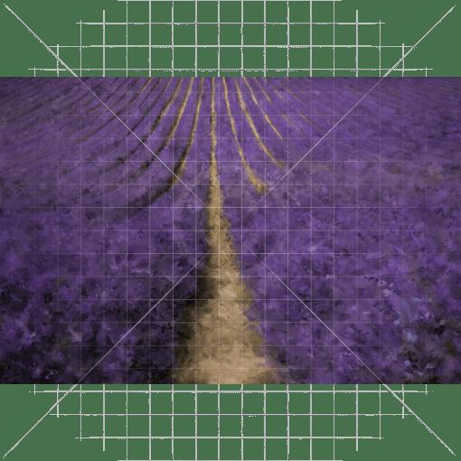 Lavender Field Photography Backdrop