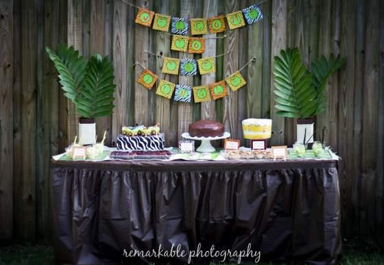 Safari Themed Decorations Baby Shower