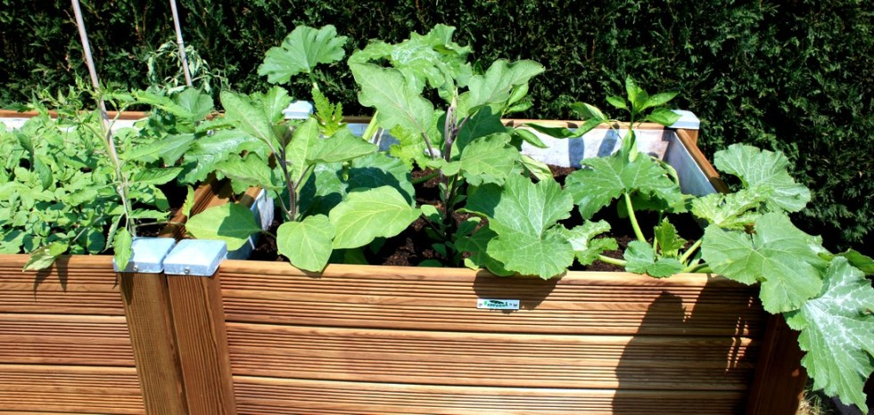 Carré potager Bac à jardiner Papycool-cultiver chez soi