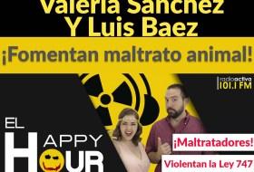 Bochinche entre Luis Baez, Valeria Sanchez y los Gatos #AdiosBosawas