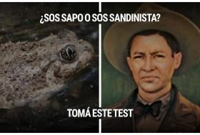 El Test definitivo para saber si sos Sandinista o un simple Sapo