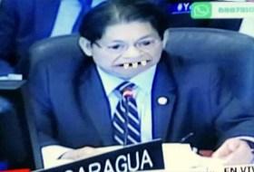 Denis Moncada lo hace de nuevo: la OEA completa le sacó en cara lo masacrador que es Daniel Ortega