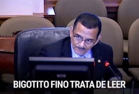 Bigotito Fino trata de defender a Masacrín (el resumen de la sesión en la OEA)