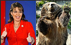 Palin Grizzley