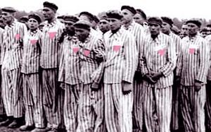 Gay nazi prisoners