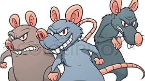 3 evil rats