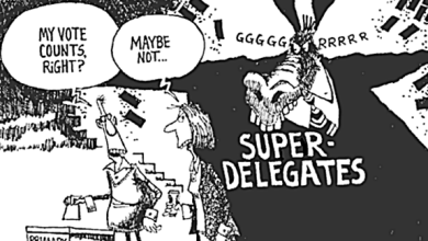 "Democratic National Committee Votes To Strip ""Superdelegates"" of Power"