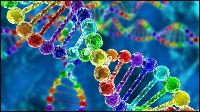 New Study Reveals Insights into the Intricate Genetic Architecture of Same-Sex Behavior