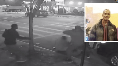 NYC: Black Gang Beats Older Gay Hispanic Man to Death in $1 Robbery on Christmas Eve
