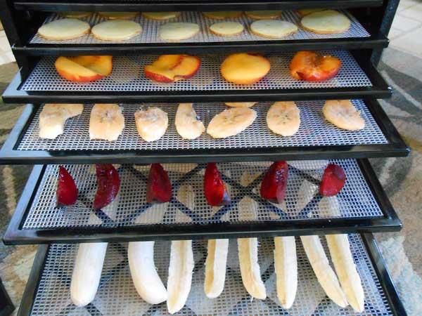 food drying 101 backcountry paleo