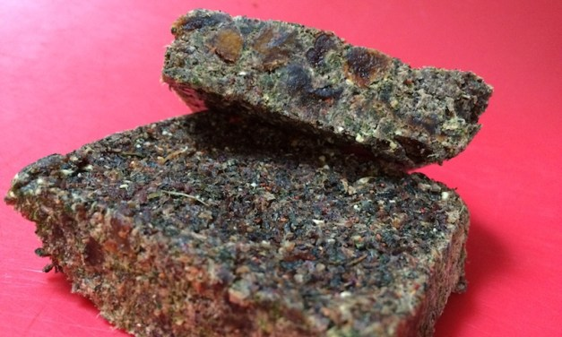 Pemmican With Dried Fruit and Greens!