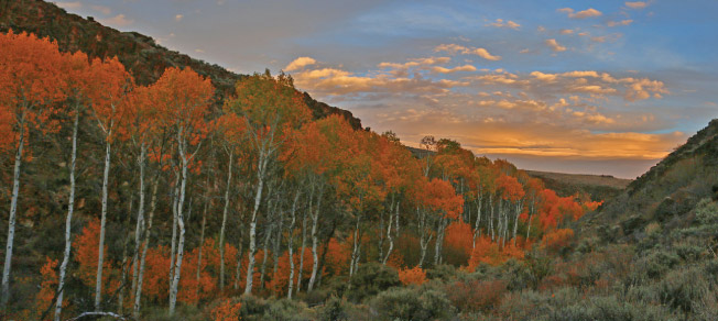 West's Best Fall Hikes