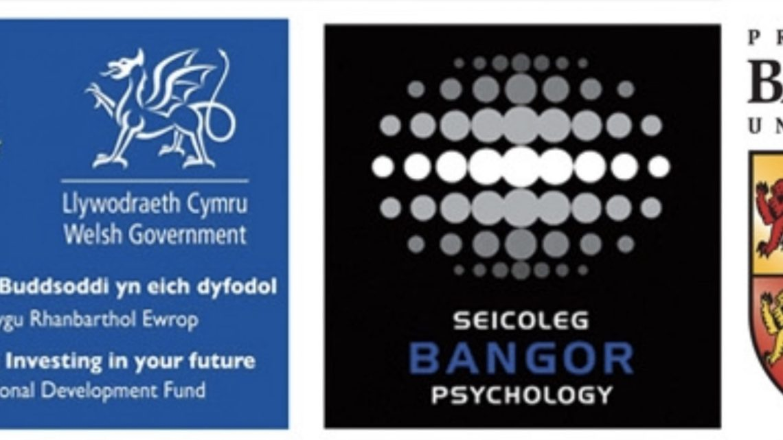 Wales Centre for Behaviour Change: Approach, Theory and Application