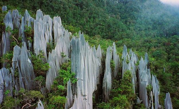 Les Pinnacles de Mulu