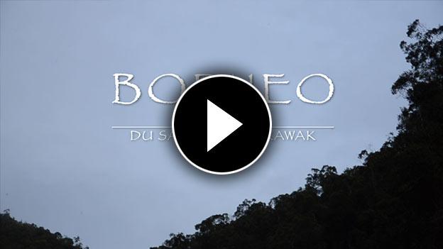 Vidéo de notre séjour à Bornéo