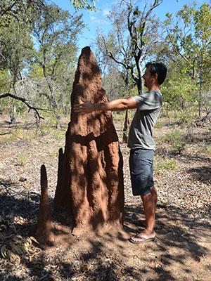 Bilan de notre road trip dans l'Outback Australien