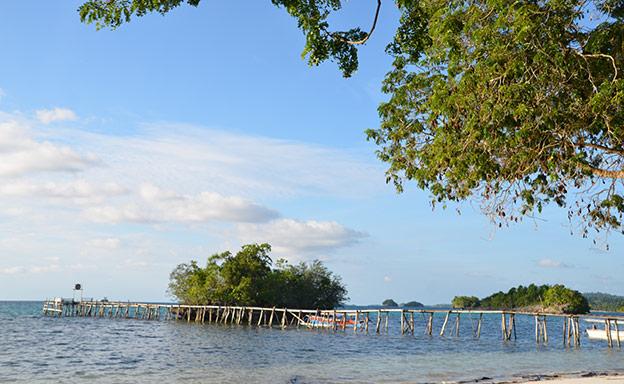 La plage de Bomba Island Retreat