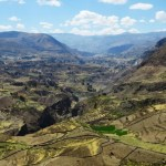 The Colca Canyon trek in Peru and how to choose the best Colca Canyon tour