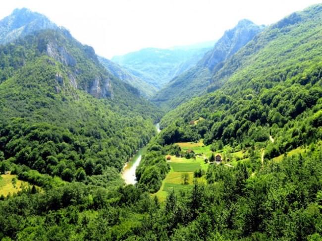 Tara gorge in Montenegro