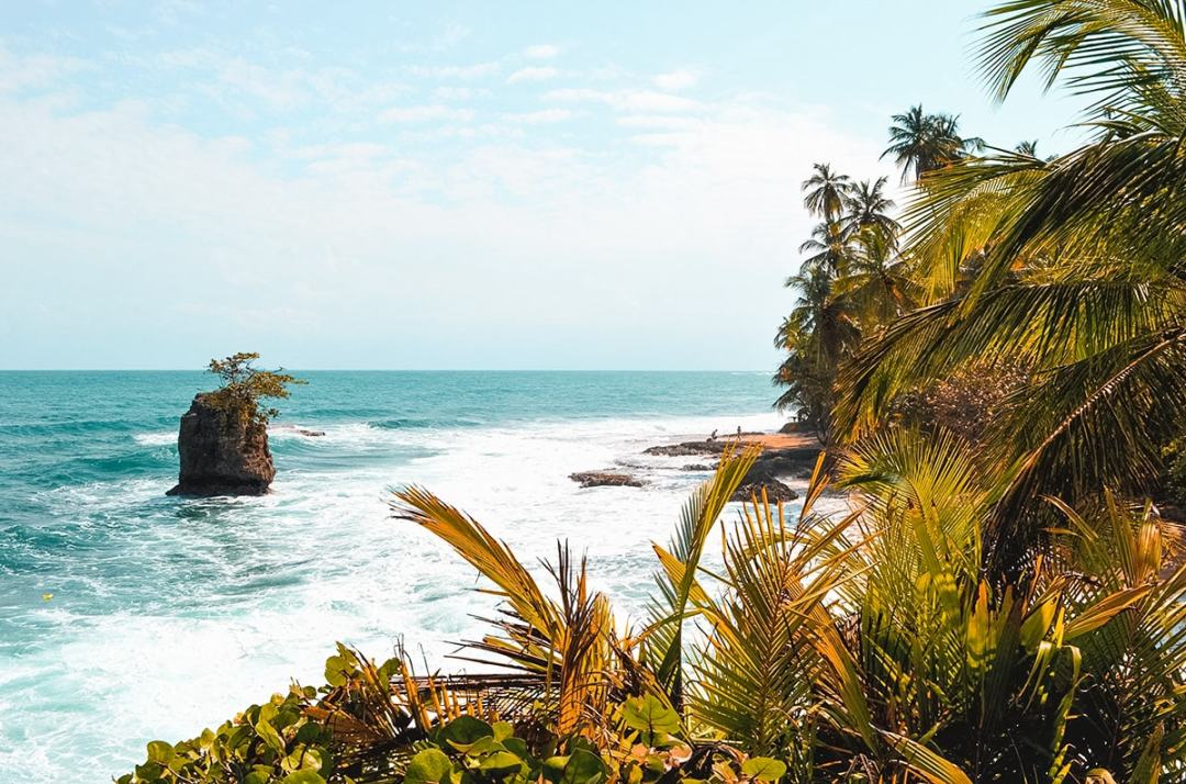 Exploring Manzanillo and Puerto Viejo In Costa Rica | Travel Central America | Caribbean | Hike | Hiking | Ocean | Rainforest | Backpacking Costa Rica | Beautiful beaches | What to do | Where to sleep | wildlife | party | Backpackers Wanderlust |