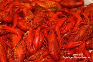 Crawfish tray in Louisiana