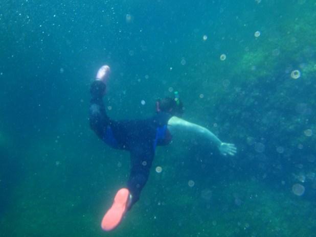 Snorkeler in the Mediterranean