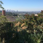 Overlooking downtown Los Angeles from Los Feliz