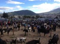 Mercado de agricultor Otavalo