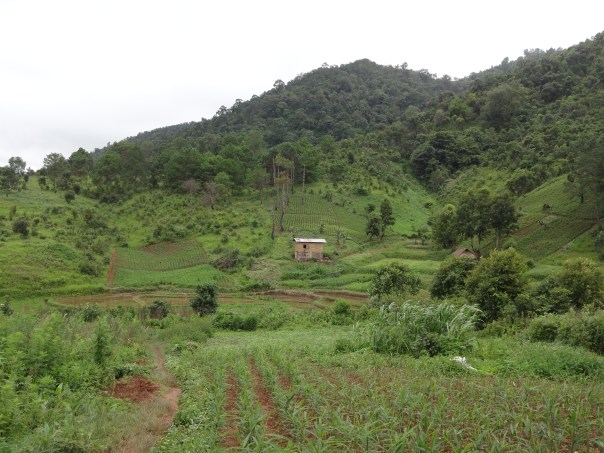 Typical landscape along the hike (Myanar, 2016).