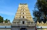 mysore-palace (10)