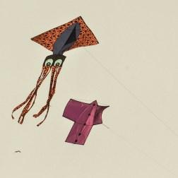 international-kite-festival-2019