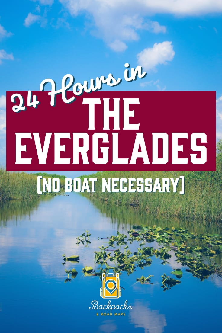 The Everglades is a massive national park with so much to see and do. We detail the best stops to make for the perfect Everglades Itinerary. Only have a day to visit? Our no-boat-necessary guide to the Everglades is just what you need in order to get the full Everglades experience in just one day. #florida #everglades #evergladesnationalpark #findyourpark #nationalparks #travelitinerary