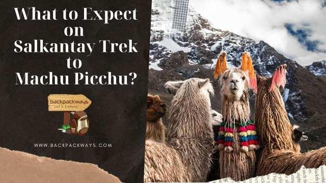 What to Expect on Salkantay Trek to Machu Picchu?