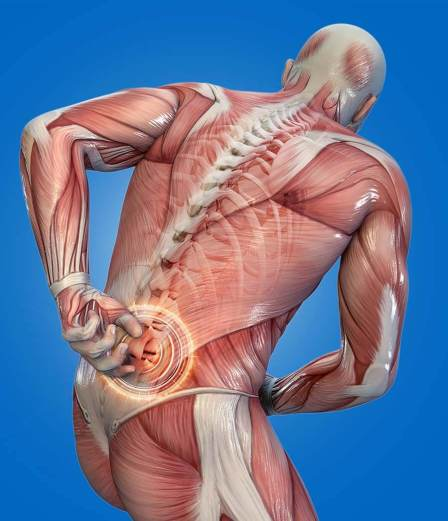 Severe Lower Back Pain Trigger Point