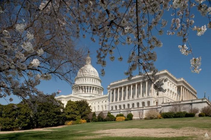6080467404 dd89042d87 o 1024x681 - The Washington Wedding that Almost Wasn't
