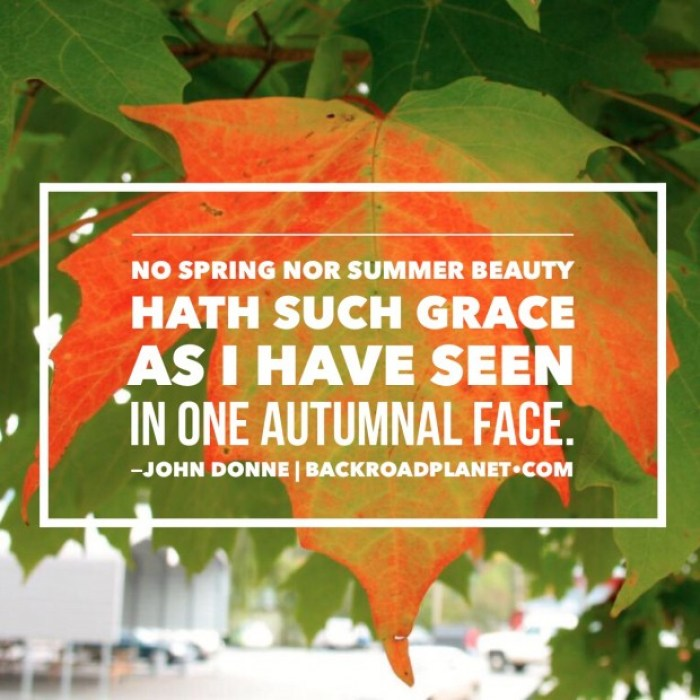 Autumnal Face Poem John Donne Meme