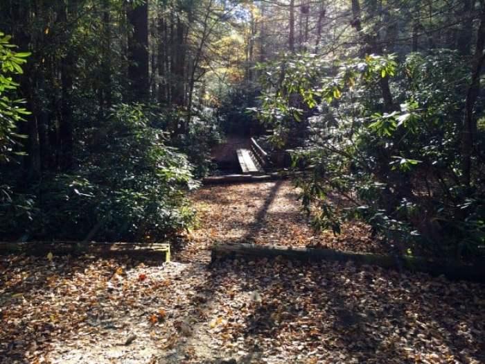 Bridge Near Long Creek Falls