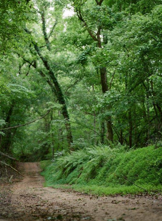 Rodney Mississippi Dirt Road
