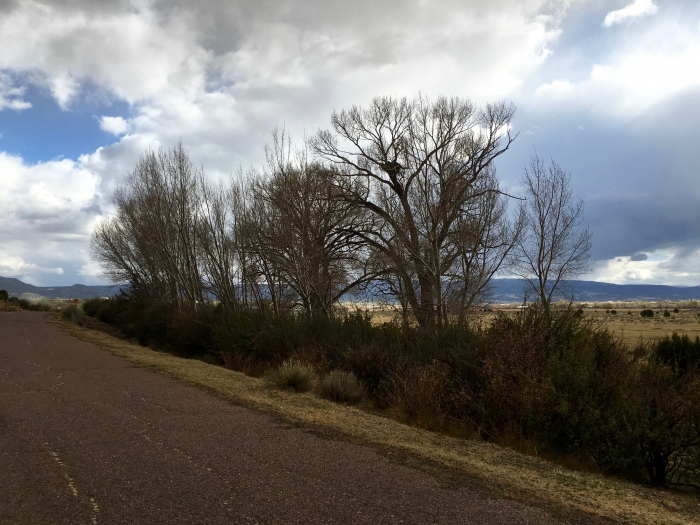 IMG 2582 - Safford to Pinetop-Lakeside: An Arizona Road Trip