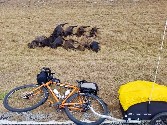 MysteryPigs300 - A Solo Bike Ride Across the Southern Tier