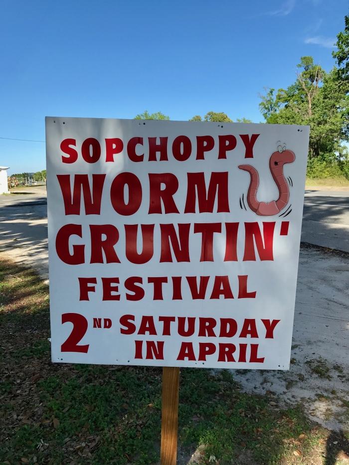 IMG 3051 - Florida Travel: The Sopchoppy Worm Gruntin' Festival