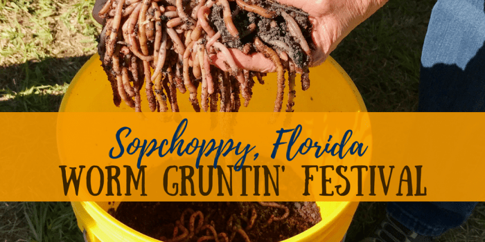 The Worm Grunting Festival - Florida Travel: The Sopchoppy Worm Gruntin' Festival