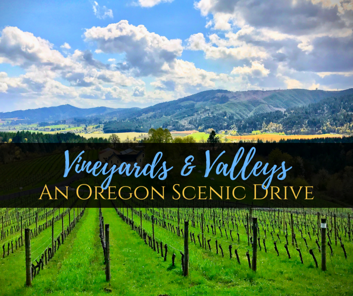 Vineyard Valley Scenic Tour - Vineyards & Valleys: An Oregon Scenic Drive